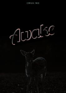 Awake affiche 17